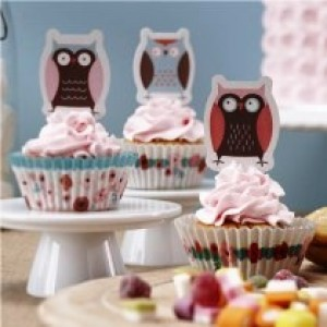 Little Hoots Cupcake Toppers & Cases