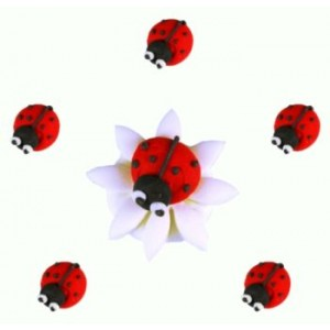 Ladybirds Icing