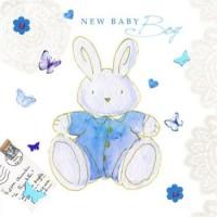 Baby Boy Bunny Card