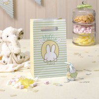 baby miffy party bag